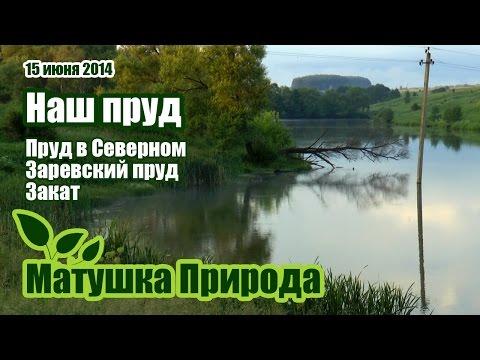 Заревский пруд в Серебряных Прудах
