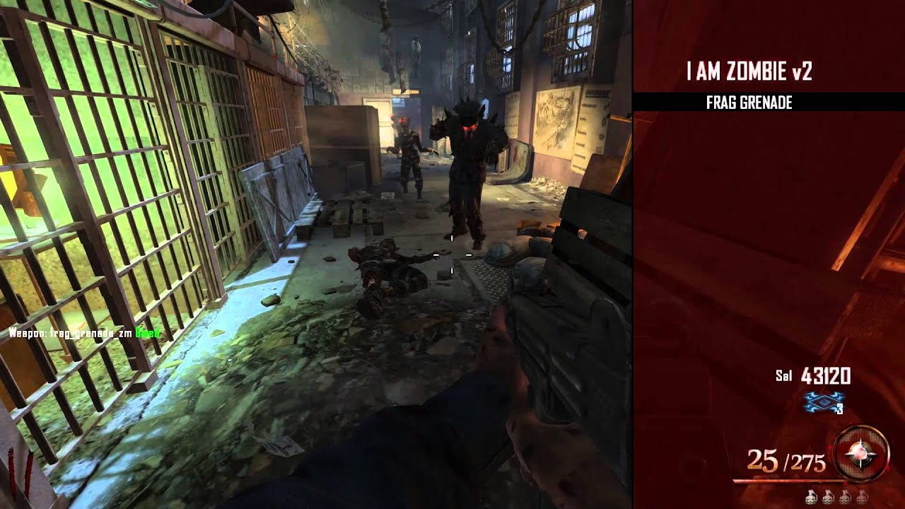 Black Ops 2 Zombies Mod Menu - Year of Clean Water