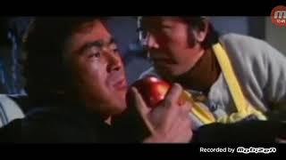 The street fighter 1974 movie martial art movie