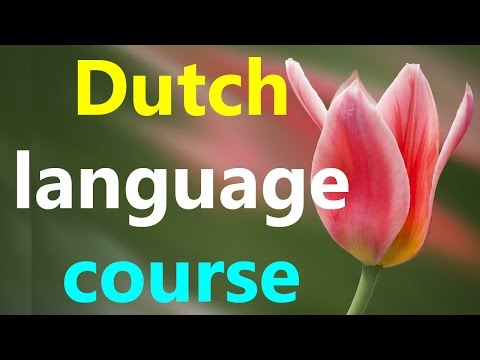 Learn Dutch language online fast for beginners conversation