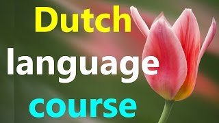 Learn Dutch language online fast for beginners conversation lesson while you sleep