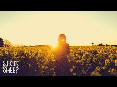Minnesota – Another Night ft. KARRA