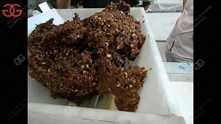 Full Automatic Nutrition Bar Making Processing Line|Energy Bar Making Machine
