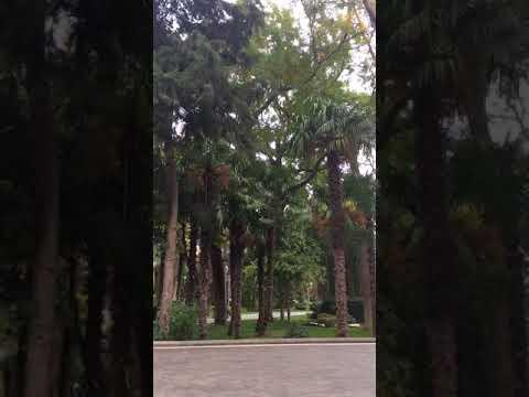 Baku, Filarmoniya Park
