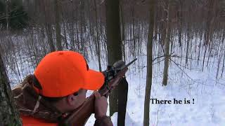 Pennsylvania Public Land Deer Hunt The Blues