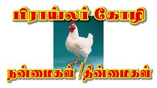 Broiler Chicken Effects in tamil (