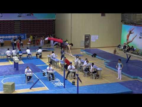 苏炜德 - Su Weide (Shandong) HB AA, 2017 CHN Junior Nationals, Weinan