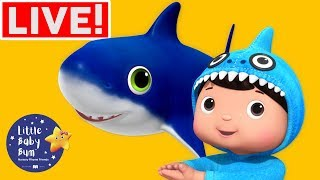 Christmas Carols for Kids | Christmas Shark +More Nursery Rhymes | Little Baby Bum LIVE