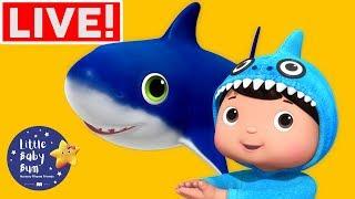 Nursery Rhymes for Kids | Baby Shark +More Nursery Rhymes | Little Baby Bum LIVE