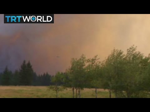 Canada Wildfire: Fires Prompt State Of Emergency And Evacuations