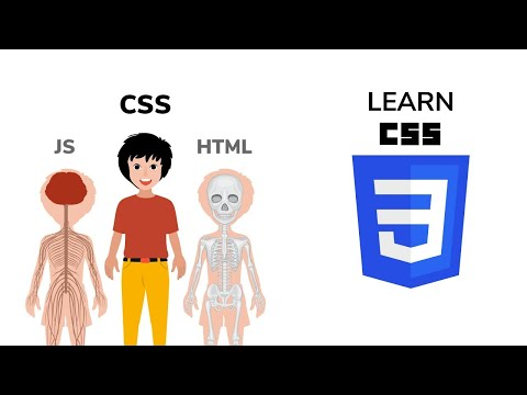 Learn CSS | Front End Web Development Tutorial | Part 2