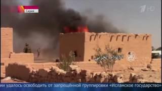Правительственные войска Сирии вплотную подошли к границе между провинциями Хомс и Дейр эз Зор