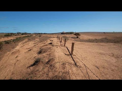 NSW govt to unveil more water funding for drought-stricken farmers