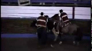 Cuarto Animal 44º Campeonato Nacional de Rodeo 1992