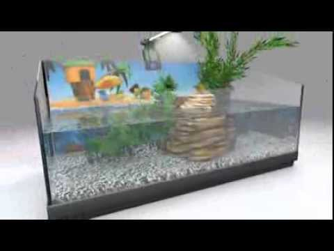 Animalin tetra reptoaquaset set tartarughiera completo for Acquario esterno per tartarughe