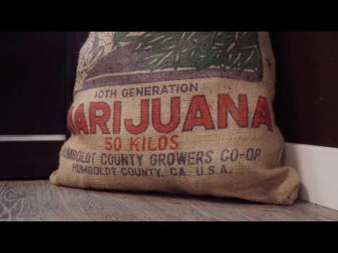 Recreational Pot Shop Tour - Clear Choice Cannabis - Tacoma, WA