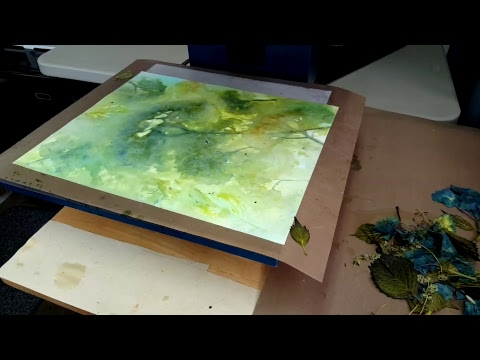 Heat Pressing Hydrangea | Paper Dying with Steam | Eco Printing