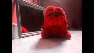 El baile del Perro Rojo (Stop Motion)