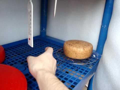 Обзор армянского сыра Дор Блю - YouTube