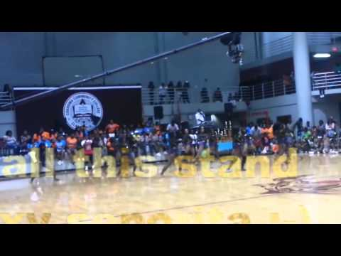The Dancing dolls vs The prancing tigerettes :Part 2 slow stand battle bring the heat