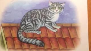 С.Черный   Как кот сметаны поел