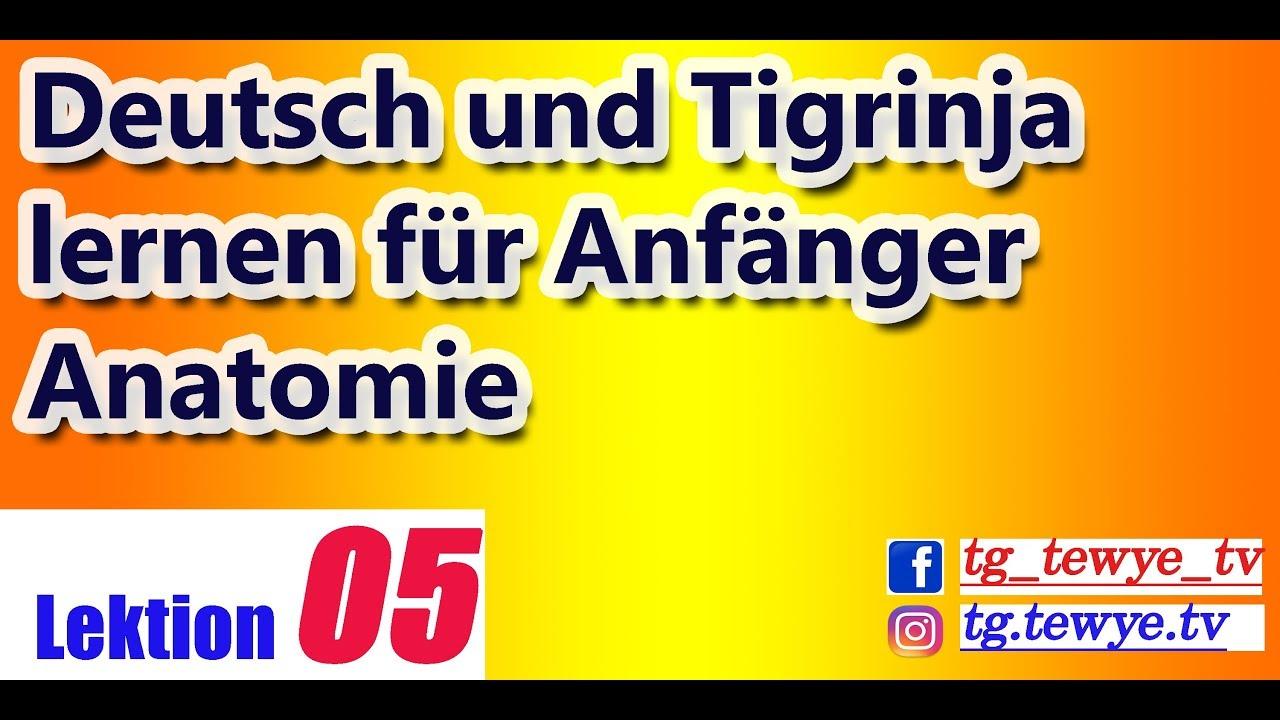 Deutsch und Tigrinya lernen Lektion 5 für Anfänger Lektion Anatomie ...