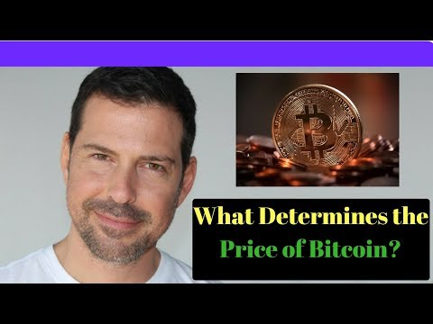 George Levy - What Determines The Price Of Bitcoin?
