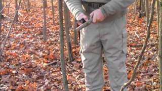 How To Select And Harvest Wood For Bow Drill Part 1 Nov 20 2010