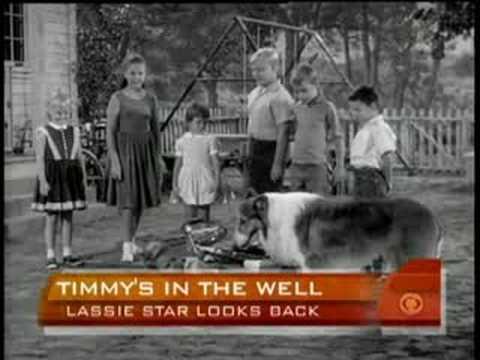 Lassie Star Writes Memoir
