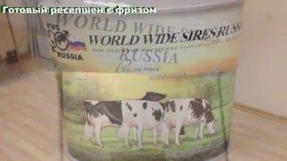 Изготовление стойки Ресепшн(, 2016-02-04T21:48:58.000Z)