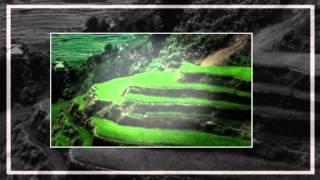 Lagu Perjuangan / Lagu Wajib - Bhineka tunggal ika ( lirik ) ( SMA N 1 DEMAK )