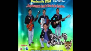 Proyecto Sierreño Chilena De Oaxaca 3 En Vivo