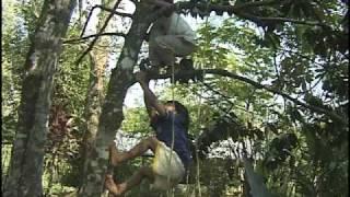 Lacandon Documentary Part 1
