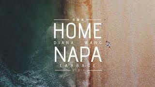 Download lagu HOME Diana Wang Lyric MP3