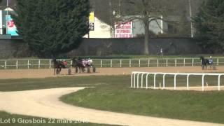 Lot 9 Grosbois 22 mars 2016