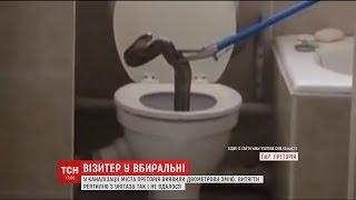 як зробити туалет в будинку якщо немає каналізації