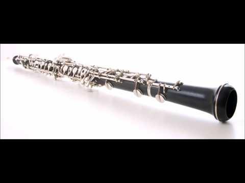 Mozart Oboe Quartet for Clarinet Quartet, Movement 1