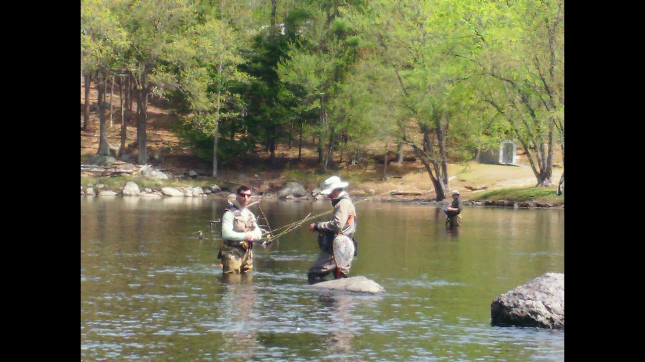 learn to fly fish nh - intermediate - youtube, Fly Fishing Bait
