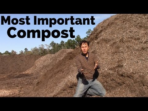 The Most Important Compost You're Probably Not Using