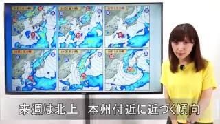 サニースポット ウェザーチャンネル 天気予報です。