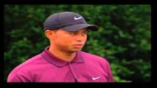 Tiger Woods PGA 2004: The 18th at Bay Hill (PS2)