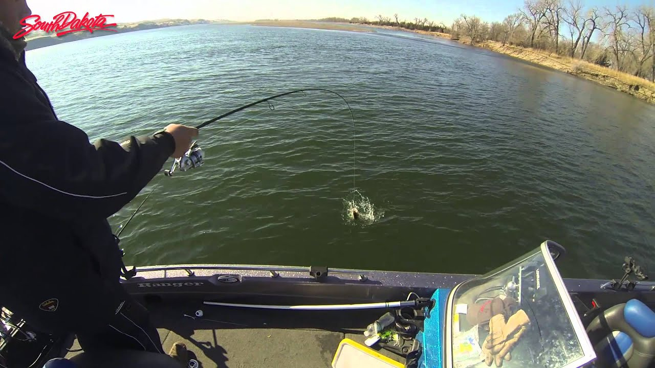 South dakota spring fishing on lake sharpe youtube for Missouri river fishing report south dakota