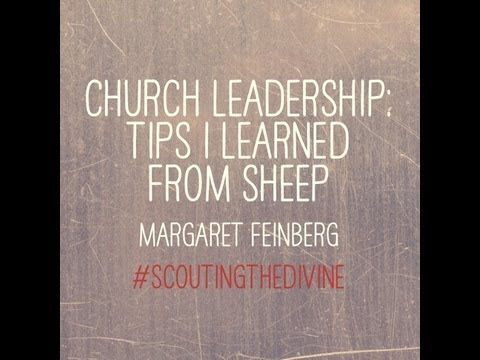 Church Leadership: Tips I Learned from Sheep