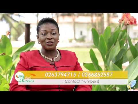 GhanaVeg Food Diaries Eps. 10 Sources of Water for Vegetable Production