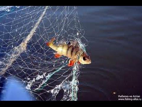 Рыболовная сеть.Алиэкспресс. 6.24$ - YouTube