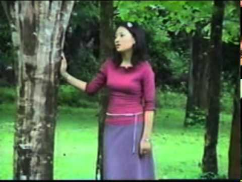 Vim Kuv Yog Tus Txhaum.mp4 (Suab Nag Yaj)
