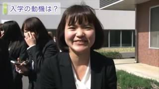 平成25年度 入学式(2)