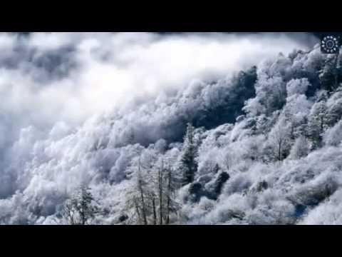 Idaho - Levitate