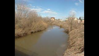 Активисты продолжают отстаивать неприкосновенность реки Шильны