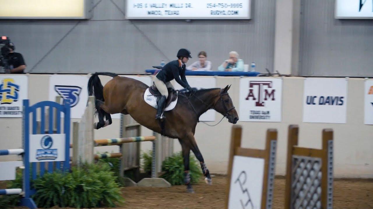 Show 518c Auburn Equestrian Team Youtube